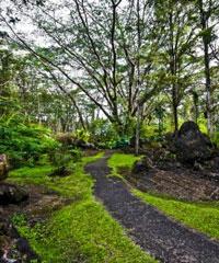 Hawaii Land Tours